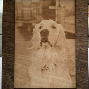 Engraved Pet Photo with Frame
